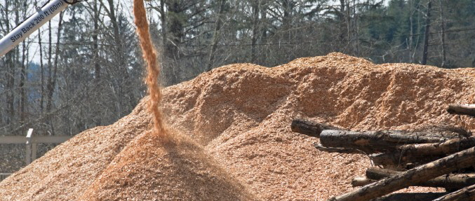 woodchips1-850x288